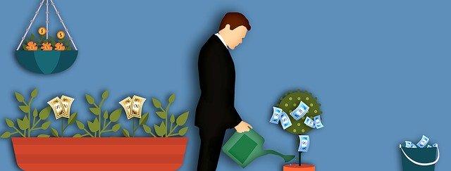 Money tree for borrowers